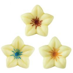 Assortimento fiori c.co bianco   76pz